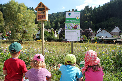 ViO Blühender Naturpark landet auf dem ersten Platz