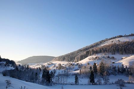 Winter01 Winterwanderung ins Buhlbachtal