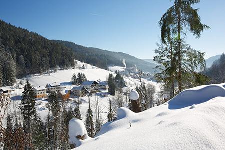 Winter02 Winterwanderung ins Buhlbachtal