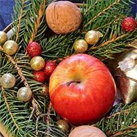 tannengrün-und-apfelrot-pixabay_Beitragsbild