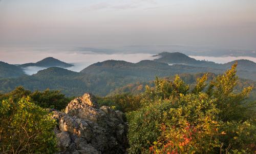Foto des Monats 500x300 Herbststimmung im Naturpark Siebengebirge