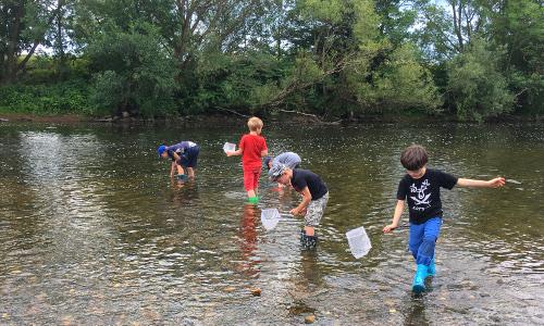 Foto des Monats 500x300 ERI Wassertiere suchen in der Sieg Naturpark Schlaufüchse