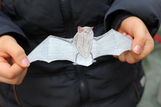 Ingrid Küsgens Fledermaus Papier auseinandergefaltet Unsere Naturparkforscher Schlaufüchse unterwegs...