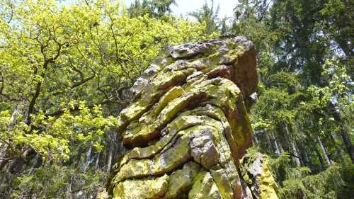 Geotope Exkursion auf der Geotoproute im Naturpark Soonwald Nahe