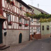 (c) Kultur- und Weinbotschafter Nahe