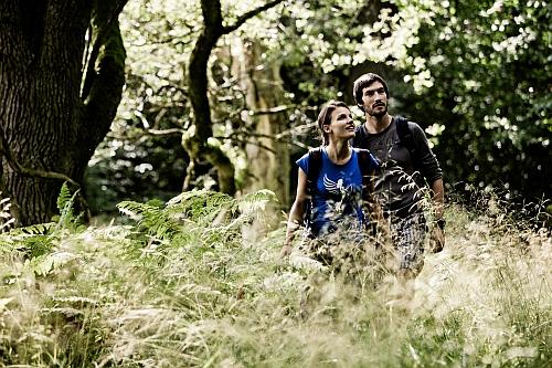 Stille genießen groß Wanderung durch den Frühlingswald