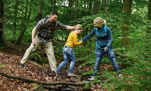 Wanderung Frühlingswald groß Die Waldentdecker Märchenwanderung in den Frühlingswald