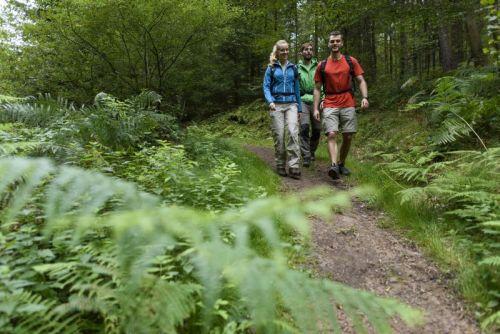 24hBayernTour BayTM2 Wanderevent 24 Stunden von Bayern im Räuberland