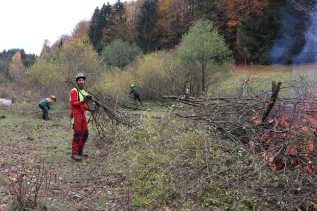 344 620x413 Etwas Krach am Kaltenbach: Einsatz für die Natur