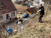 Pflegemaßnahme in Dammbach
