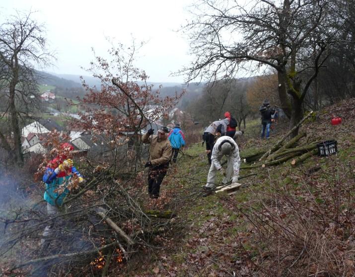 Arbeit an der Nonnenhöhe Salomon Aschaffenburger Umweltpreis für Grünlandprojekt in Dammbach