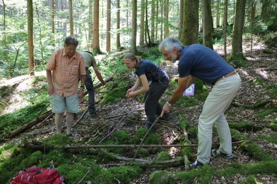 Aufgabe ein Vogelnest bauen Erfolgreiche Ausbildung von Natur  und Landschaftsführern