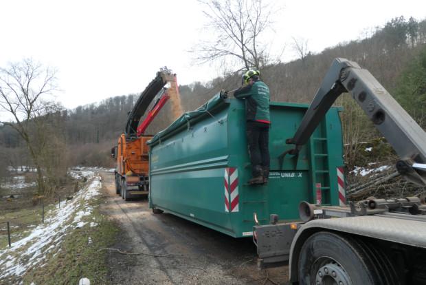 Büffelweide Gehölzentnahme 2 Feb2021 AGries 620x414 Frühjahrsputz auf der Wasserbüffelweide