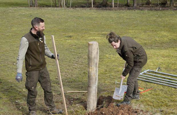 Büffelweide Zaunbau Feb2021 VSchuler 620x405 Frühjahrsputz auf der Wasserbüffelweide