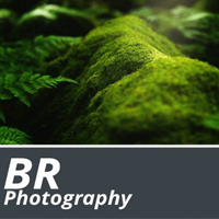 BR Photography