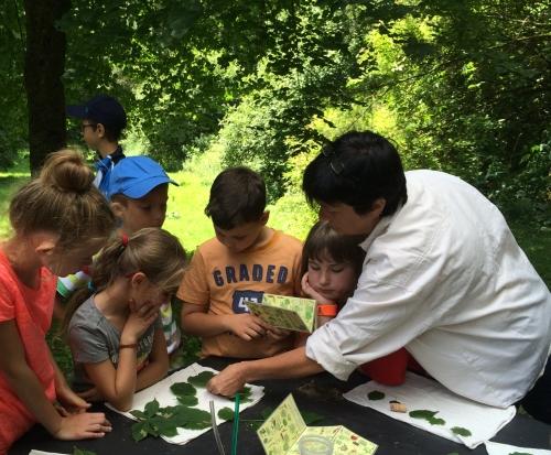 Baum Memory Thomas Weigel Naturpark ist Partner bei Schule macht Zeitung