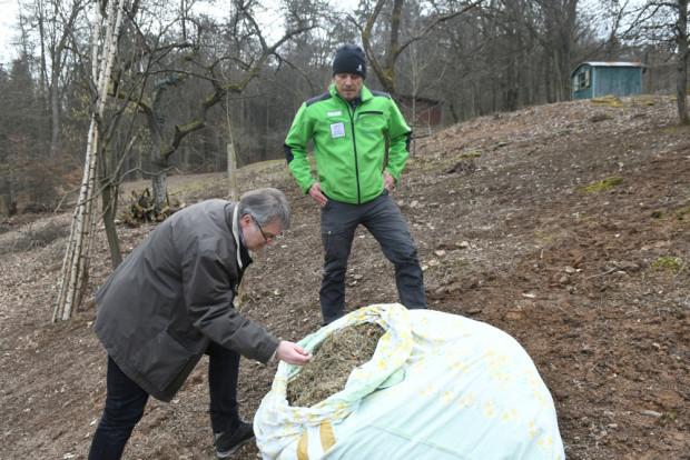 """Begutachtung Saatgut Torsten Ruf 620x414 Magerwiesen am Rodenbacher """"Alten Weinberg"""" werden wiederhergestellt"""