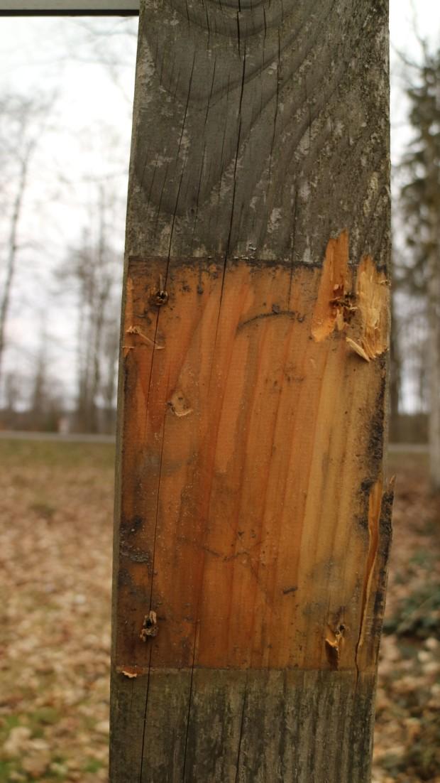 Beschädigter WW Niklaskreuz 620x1102 Vandalismus im Naturpark Spessart