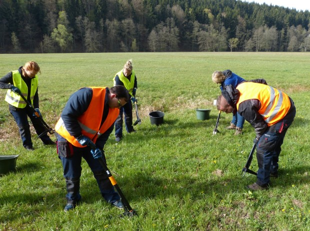 Bild4 Mitarbeiter Mehytec und Bürgermeisterin Zieres Foto J.Bruhn  620x463 Naturschutz Helfer bekämpfen giftiges Wasserkreuzkraut im Sinngrund