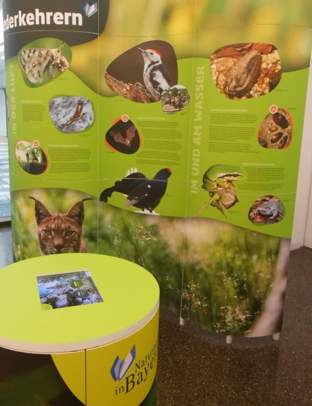 """DSCN3306 620x807 Präsentation der Ausstellung """"Naturparke in Bayern"""" in Würzburg anlässlich des 60 jährigen Jubiläums des Naturpark Spessart"""