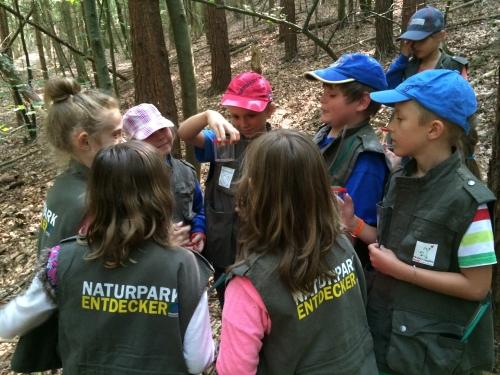 Entdecker Tour in Dorfprozelten Thomas Weigel 2 Naturpark ist Partner bei Schule macht Zeitung