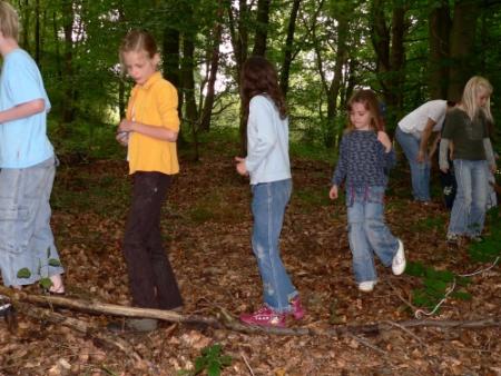 Exkursion zum Baum des Jahres Marita Prechtl Naturparkführerin Marita Prechtl
