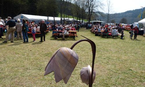 Fest Schachblumenfest in den Reithwiesen von Obersinn