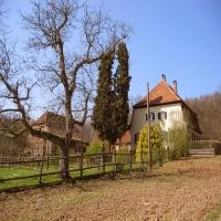 Forsthaus Neubau