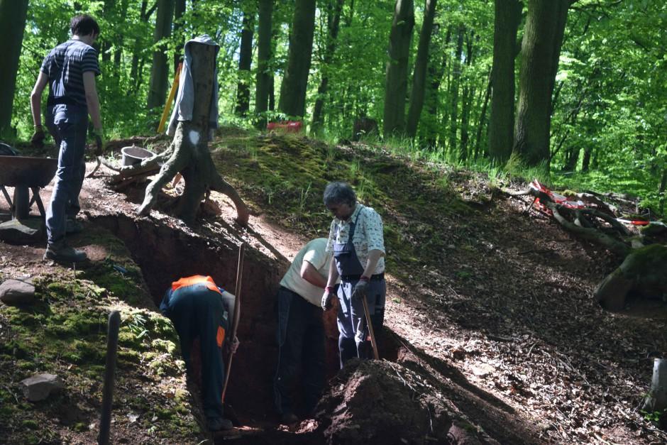 Grabung in Waldaschaff mit Harald Rosmanitz 1 940x627 Ausgrabungen an der Burg Wahlmich bei Waldaschaff