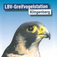 Greifvogelstation Klingenberg logo 200x200