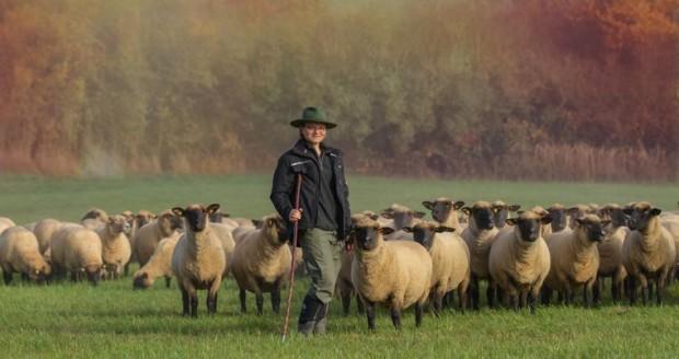 IMG 61731 620x328 Erste Schafhalter von Grünland Spessart zertifiziert