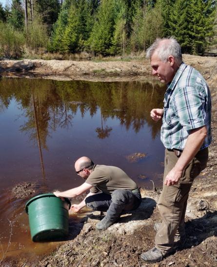 Karauschenbesatz Forst Biotope 3klein Fischbesatz mit Karauschen bei Obersinn