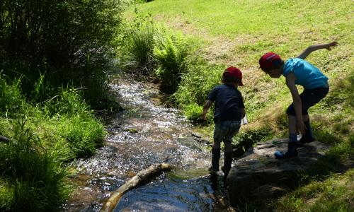 Kinder bei Wasserlauf Spessart Safari für Kids
