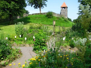 Kräutergarten im Sommer-(c)- VDNS. Jost- Hoher Vogelsberg