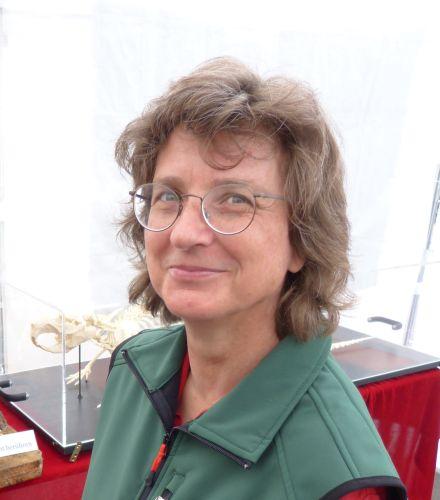 Monika Steger Von der Bayrischen Schanz zum Kloster Einsiedel