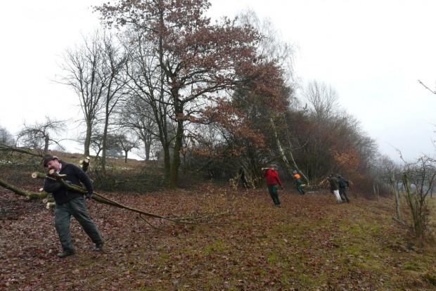 NP Pflegemaßnahme Dammbach 2013 620x414 Erfolgreicher Aktionstag des Grünlandprojekts in Dammbach