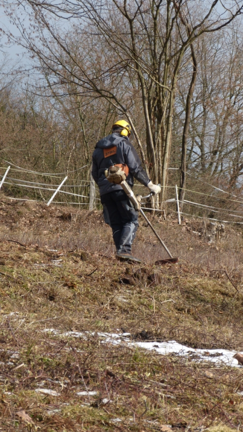 NP Pflegemaßnahme Dammbach klein Aktionstage Dammbachtal am 7.2 und 28.2