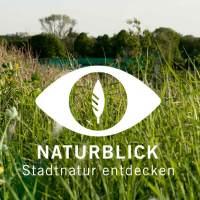 App Naturblick (Foto: Naturkundemuseum Berlin)
