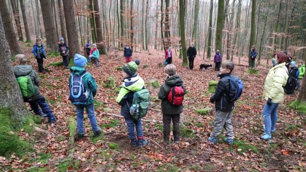 Naturpark Schule Partenstein Baumpflanzen 1 620x349 Grundschüler pflanzen Bäume im Partensteiner Wald
