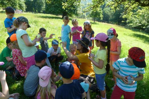 Naturpark Schule Wiese Auszeichnung für Naturpark Spessart Schule