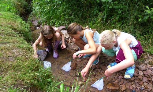 Naturpark Schule Auszeichnung für Naturpark Spessart Schule