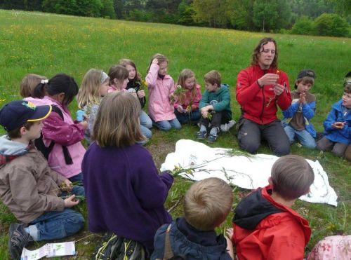 Naturparkschule Partenstein Wiesenexkursion Naturpark macht Schule