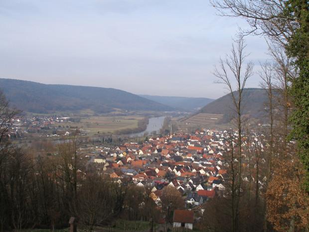 P2020695 620x465 Die Flora unter´m Kloster Engelberg