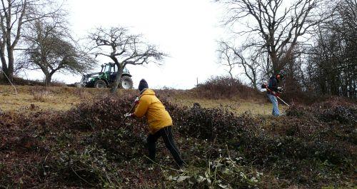 Pflegemaßnahme Dammbachtal 3 Landwirte und Naturschützer packen im Dammbachtal gemeinsam an