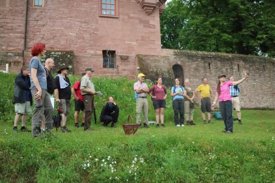 Probeführung an der Burg Rieneck Erfolgreiche Ausbildung von Natur  und Landschaftsführern