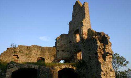 Ruine Homburg1 Überlebenskünstler im Naturschutzgebiet Ruine Homburg