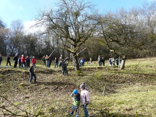 Schnittkurs des Grünlandprojekts Dammbach 2 Schnittkurs für alte Apfelbäume traf auf großes Interesse