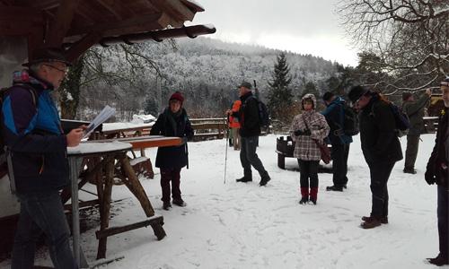 Steffl Schneewanderung zur Burg Wildenstein