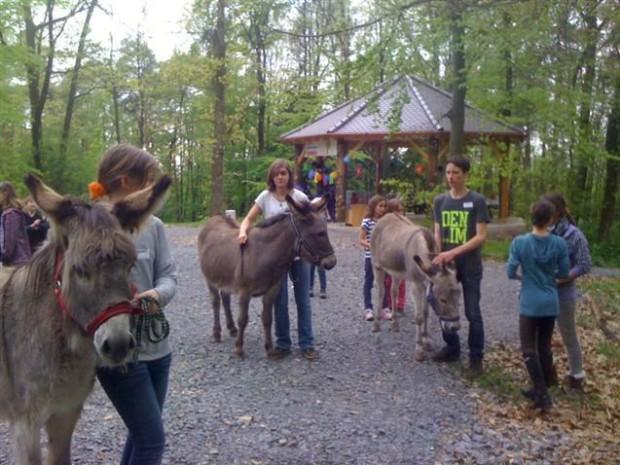 Umgang mit Tieren 620x465 Abenteuerfarm Knochengarten