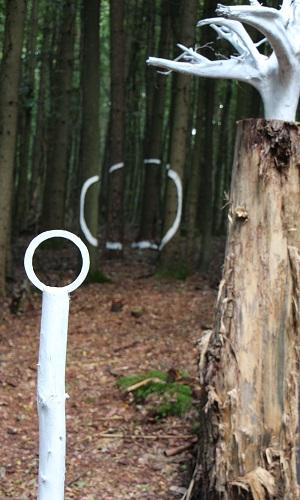 Wald und Kunst Kunstwerk Wald  und Kunsttag an der Bayrischen Schanz